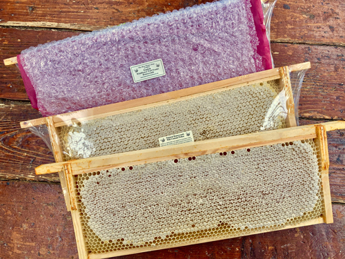 English Wildflower Honeycomb, Whole Frame